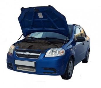 Газовый упор капота Chevrolet Aveo T255 (06-12 г.в.)